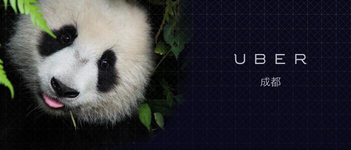 uber-chengdu-panda